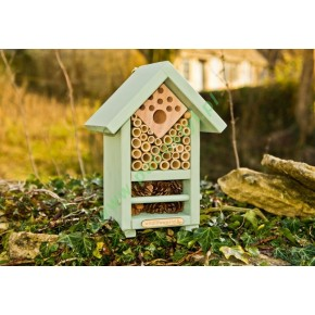 Biom/ekosystem dla pszczół i innych owadów