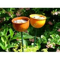 Karmnik metalowy kwiatowy  - kolor pomarańczowy